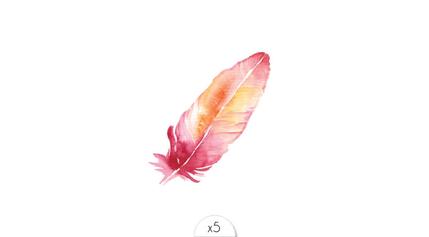Pink feather x5
