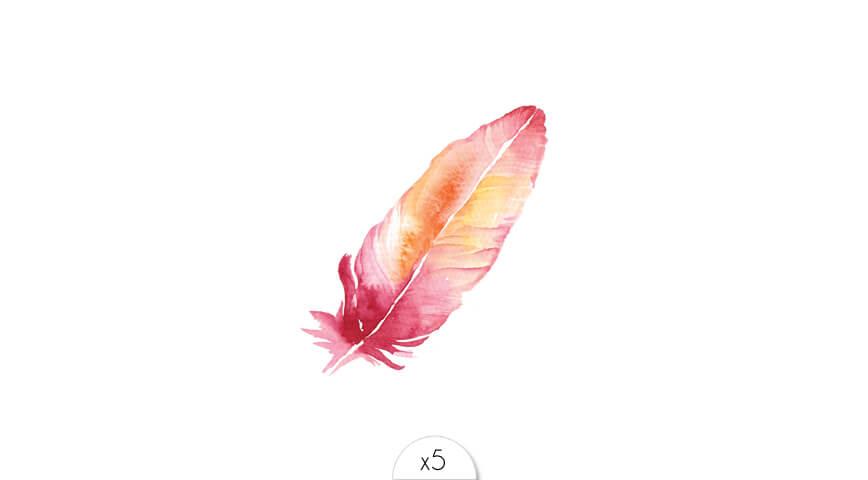 Plume rose x5