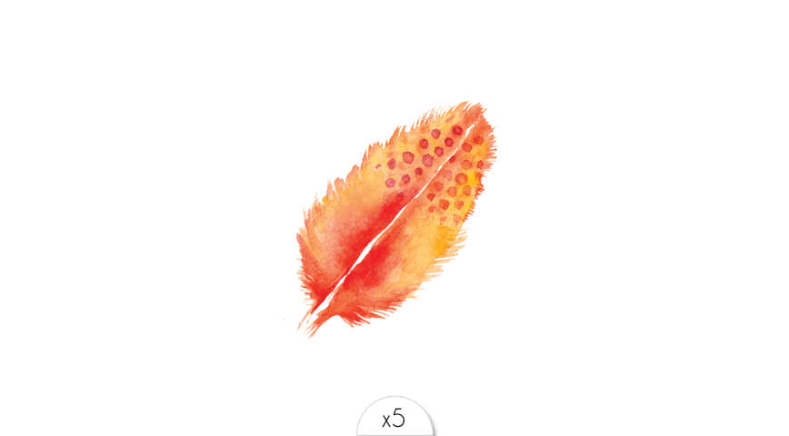 Orange feather x5