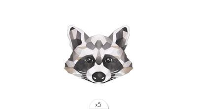 Racoon x5