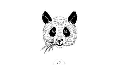 Panda x5