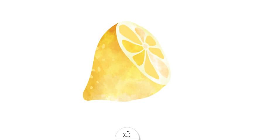 Lemon x5