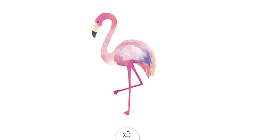 Flamingo x5