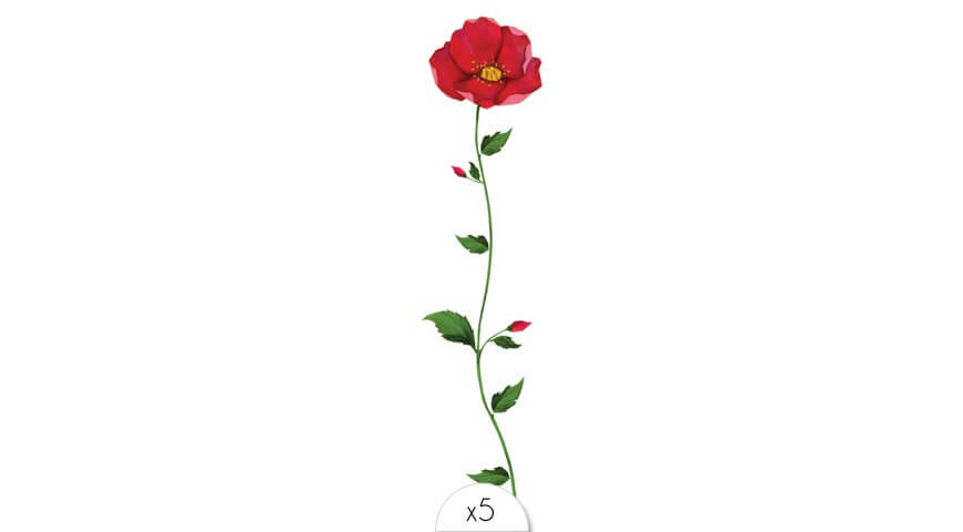 Rose bracelet x5