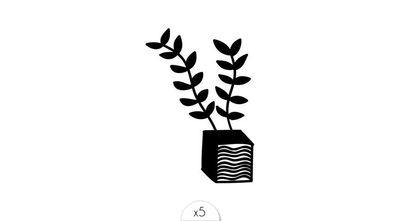 Plante x5