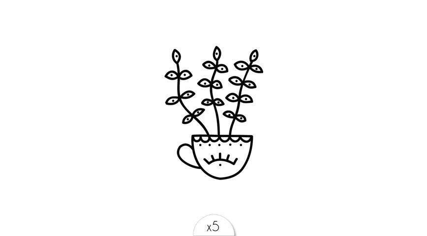 Plante oeil