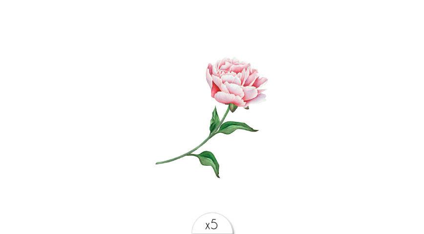 Pink flower x5