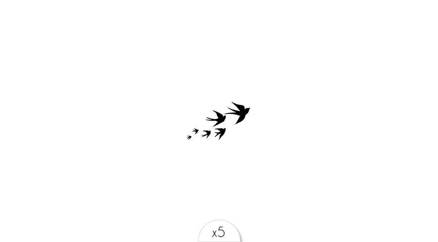 Envolée d'oiseaux x5
