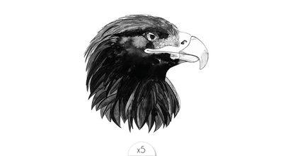 Aigle x5