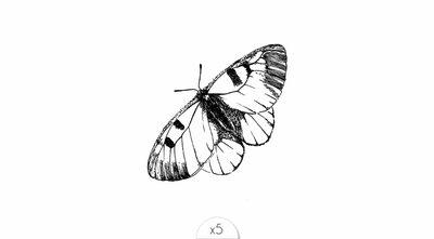 Papillon noir x5