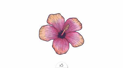 Hibiscus Flower x5