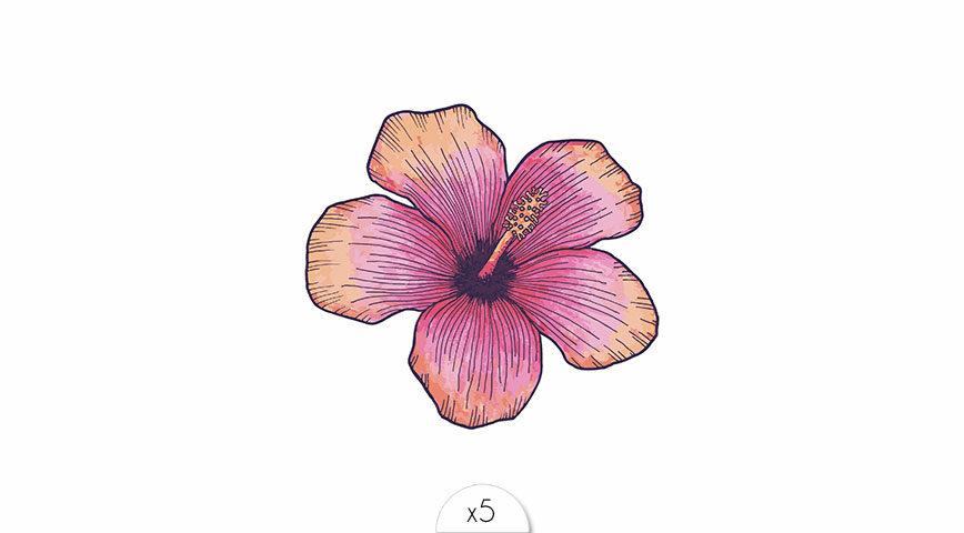 Fleur d'hibiscus x5