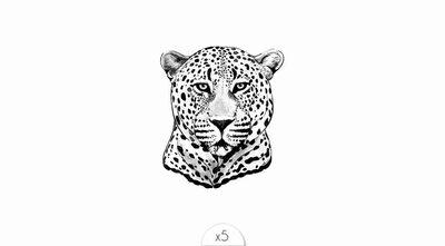 Leopard x5