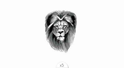 Lion x5