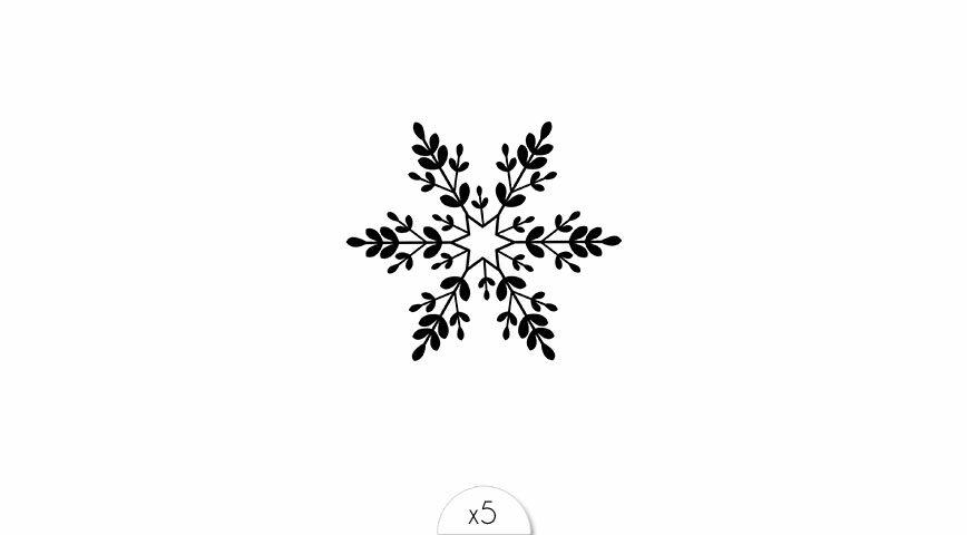 Snowflake x5