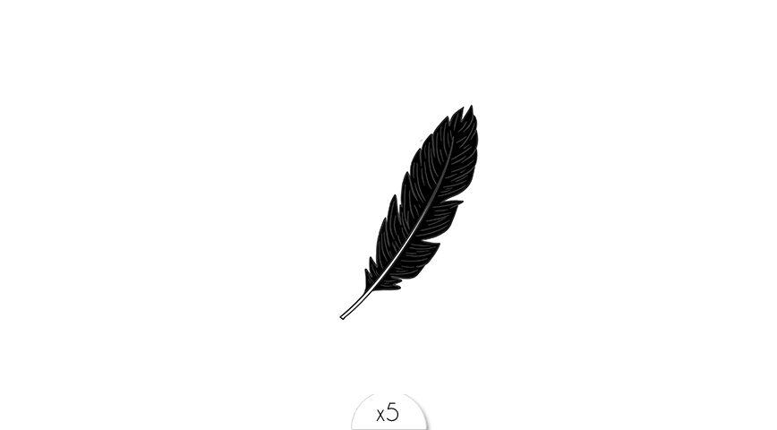 Black feather x5