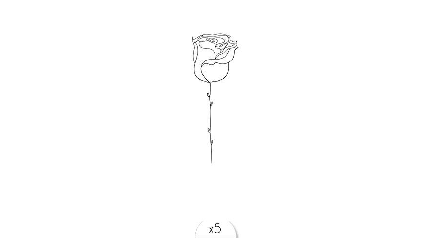 One line rose x5