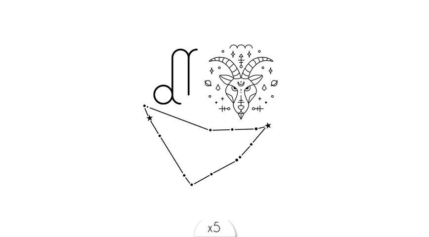 Capricorne x5
