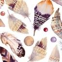 Boho feather